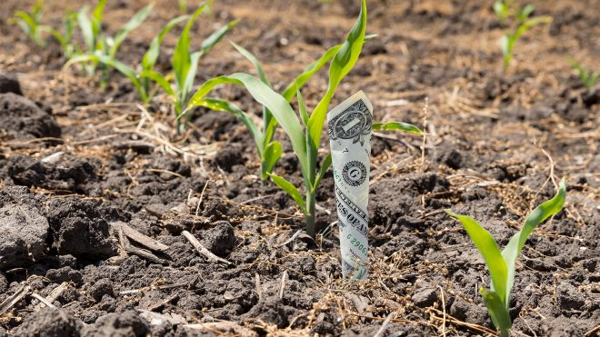 Whole-Farm Revenue Protection Program