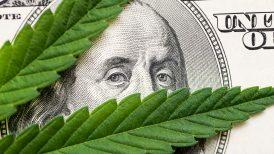 marijuana leaf sitting on top of $100 bill