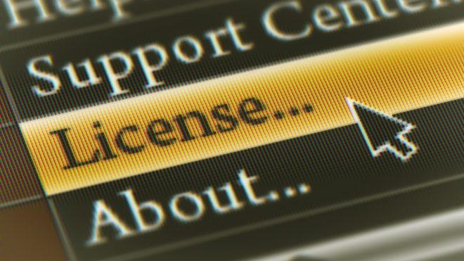 Screenshot of a software license menu in software program